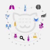 Set of veterinary icons — Stock Photo