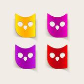 Realistic design element: owl — Stock Photo