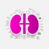 Kidney inside medical formulas — Stock Vector