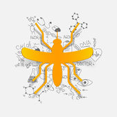 Mosquito illustration — Stock Vector
