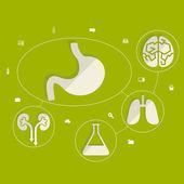 Медицинские инфографические элементы — Cтоковый вектор