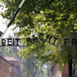 Auschwitz — Stock Photo #22174943