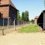 Auschwitz — Stock Photo #22174993