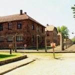 Auschwitz — Stock Photo #22738119