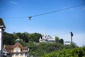 Lucerne — Stockfoto