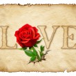 Old curly paper with red rose , space for text or images — Stock Photo