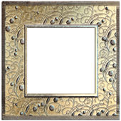 Picture frame with floral ornament — Stock Photo