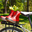 Red laced boots on bicycle in park — Stock Photo