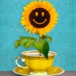 Stock Photo: Smiling sunflower in cup