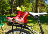 Red laced boots on bicycle in park — Stockfoto