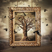 Magic tree with birds in frame — Stock Photo