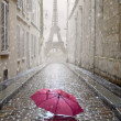 Romantic alley on a rainy day. — Stock Photo #48154219