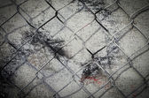 Wire mesh texture — Stock Photo