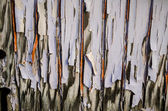 Peeling Faded Paint — Stock Photo