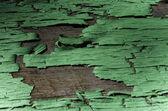 Loupání zelené barvy — Stock fotografie