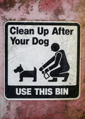 Clean up after your dog — Stock Photo