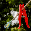 Stock Photo: Red clothes peg