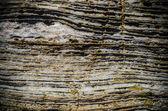 Layered rock texture — Stock Photo