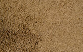 Natural tan suede texture — Stock Photo