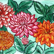 The picture an author multicolored dahlias — Стоковая фотография