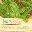 Rainbow Swiss Chard For Sale In Basket — Stock Photo