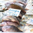 Fresh Fish On Sale — Stock Photo