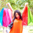 Young Woman Carrying Shopping Bags — Stock Photo #30430537