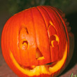 Freshly Carved Pumpkin Jack-o-lantern — Stock Photo #30730619