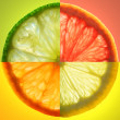 Citrus Slice — Stockfoto