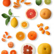 Citrus collection — Stockfoto #19359871
