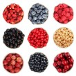Summer fruit collection — Stock Photo #19360099