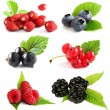 Foto Stock: Summer berries isolated on white