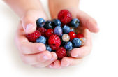 Child hands with summer berries — Stock Photo