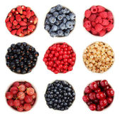 Summer fruit collection — Stock Photo