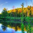 Beaver pond at sunset - Stock Photo