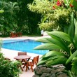 Pool in tropical setting — Stock Photo