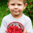 Boy with raspberries — Stock Photo