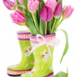 Spring tulip flowers in boots — Stockfoto