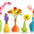 Spring flowers in vases - Stock Photo