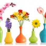 Spring flowers in vases — Stock Photo