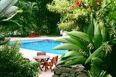 Pool in tropical setting — Stock Photo