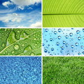 Nature eco backgrounds — Stock Photo