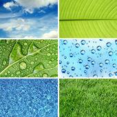 Nature eco backgrounds — Stock Photo