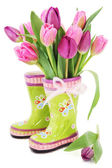 Spring tulip flowers in boots — Stock Photo
