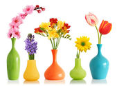 Spring flowers in vases — Stock Photo