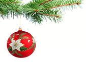 Christmas ball on a tree — Stock Photo