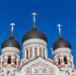 Aleksandr Nevsky Cathedral — Stock Photo