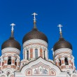 Stock Photo: Aleksandr Nevsky Cathedral