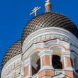 Two domes of the Aleksandr Nevsky cathedral in Tallinn — Stock Photo