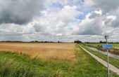 Bicycle path through dutch landscape — Stock Photo